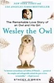 Graphic of Wesley the Owl book cover