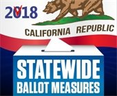 graphic for statewide ballot measures