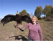 Carol Singleton with bird of prey on her arm