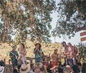 Band under oaks