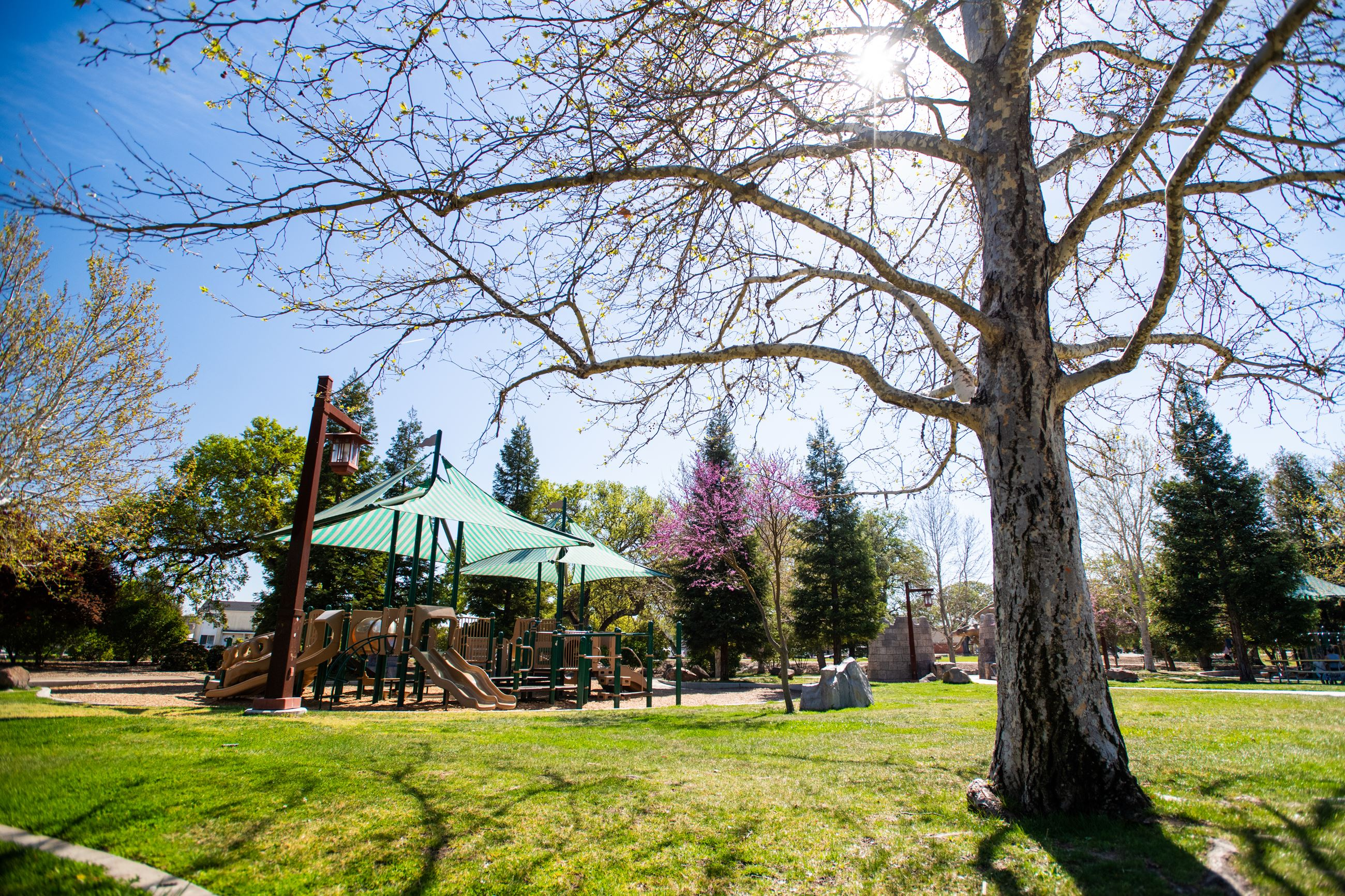 Sherwood Park Playground (slide)