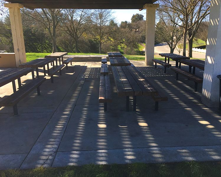 Centennial Barbeque Tables