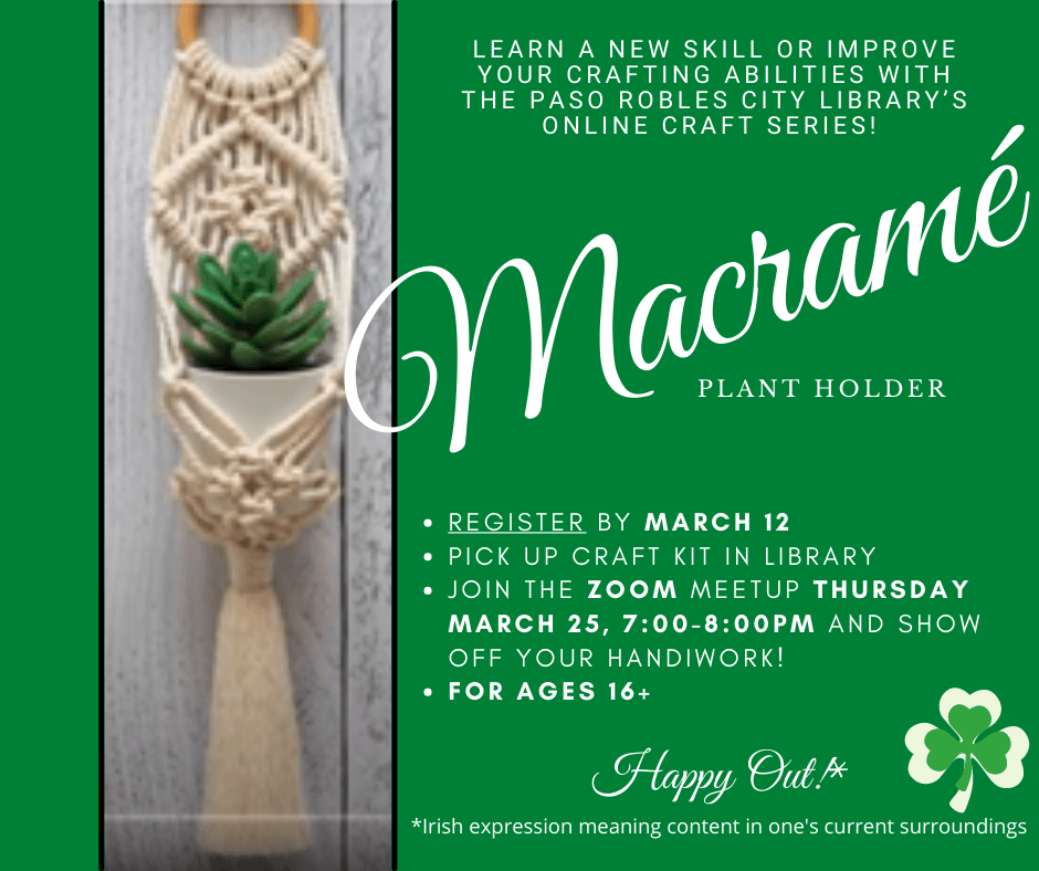 Succulent plant hanging in macrame holder