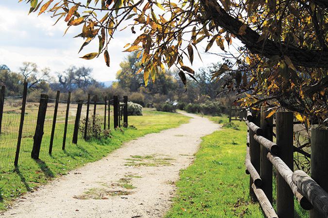 Salinas River Trail